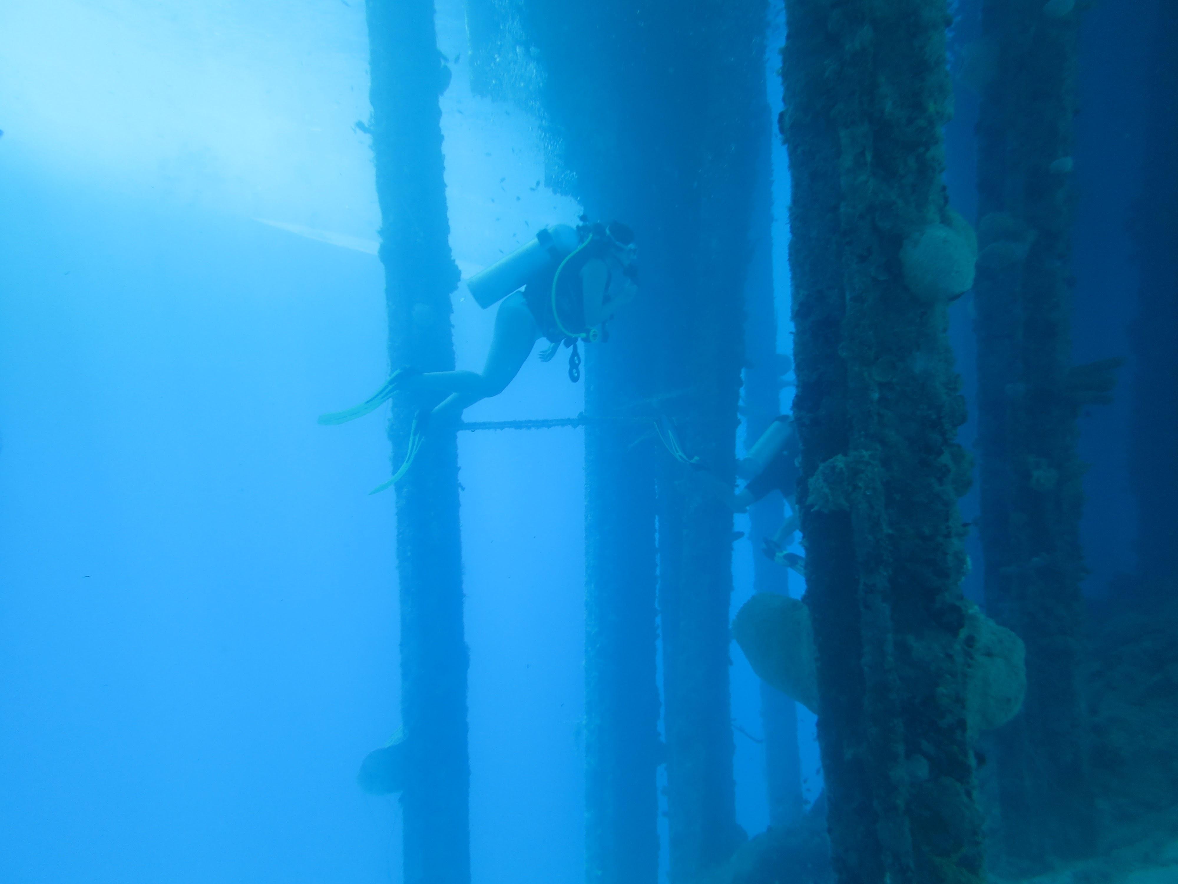 Bonaire Pier Dive